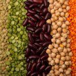 Les proteines vegetales font elles maigrir1 1 150x150 - Intervention conférence protéines végétales pour le Groupement Epik