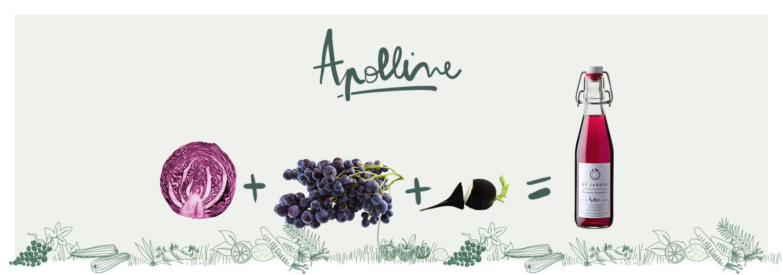 """b61a7ad22e578d2e47e0b124daae6ba9781b9c6f appoline recette - Nouveaux jus bio de légumes, de fruits et d'herbes aromatiques """"By Jardin"""""""