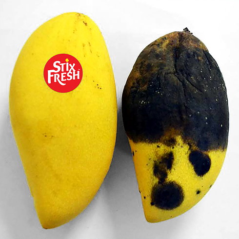 d54f0f 29f7964e244a4dd5aaf189b8e90dc32cmv2 - Stixfresh : une pastille qui promet de conserver les fruits plus longtemps