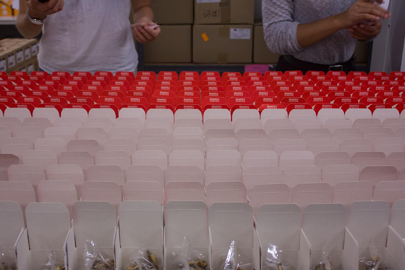 05 - Visite des unités de production de JIMINI'S