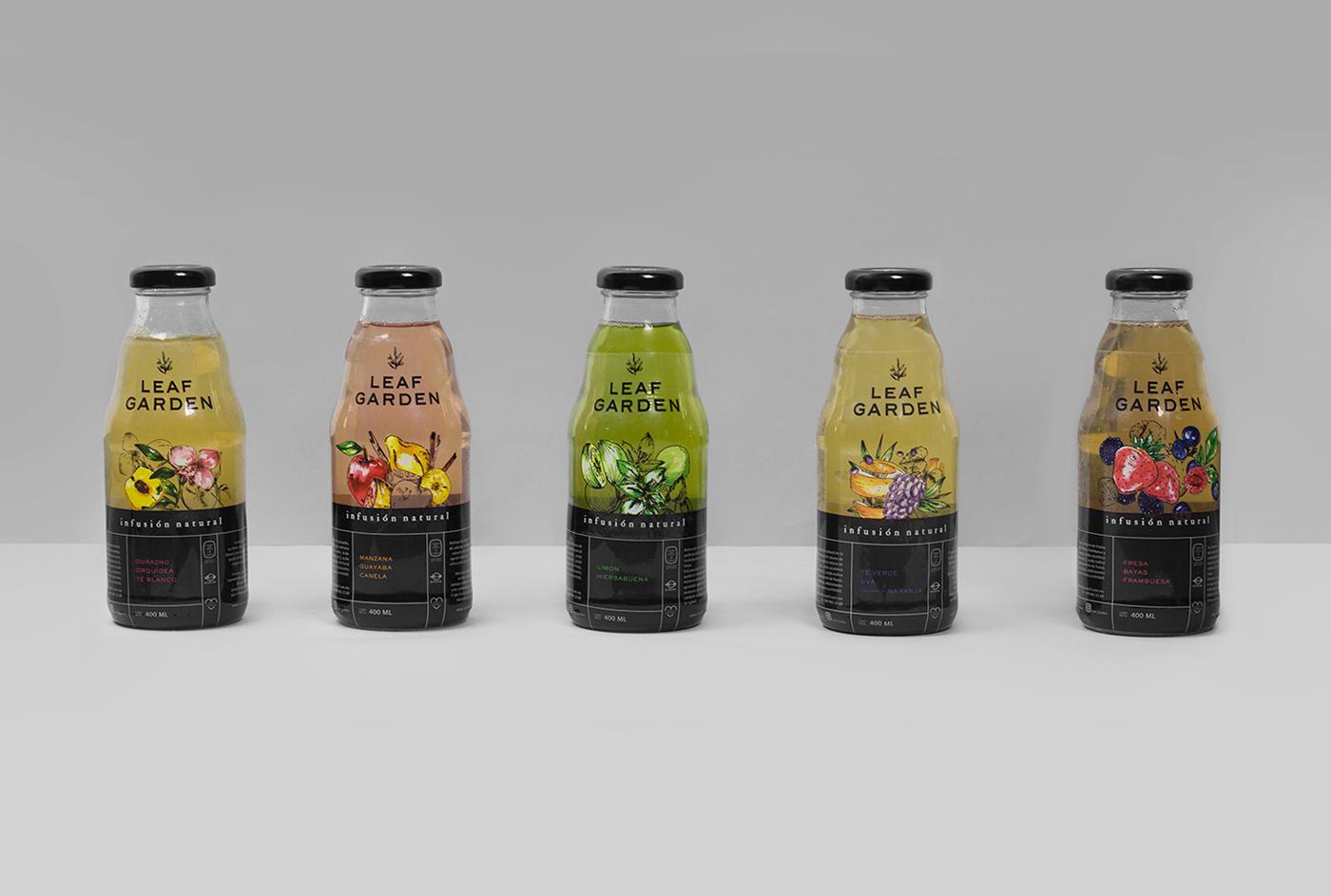 0f8ad148123247.588f864b3a2c2 - La boisson qui promet l'immortalité - Leaf Garden