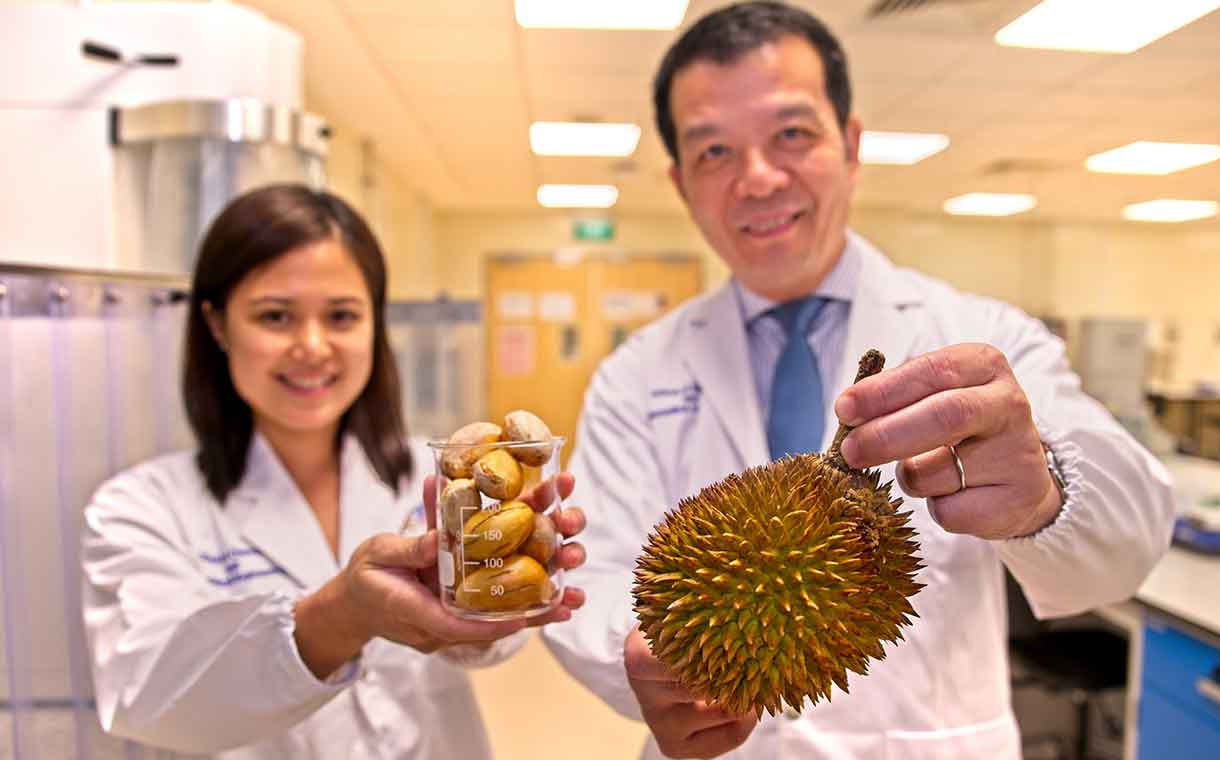 Durian - Un stabilisant alimentaire 100% naturel à base de graines de durian