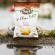 Bretz 55x55 - Une gamme 100% bio pour Bret's, la chips bretonne