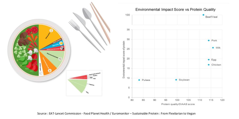 Capture d'écran 2019 04 15 à 15.03.41 - Nourriture du futur : que mangerons-nous en 2050 ?  - Partie 1