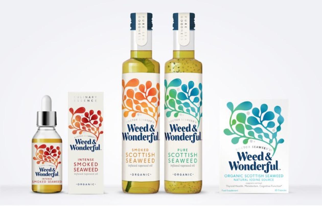 Sans titre 34 - Des huiles d'algues