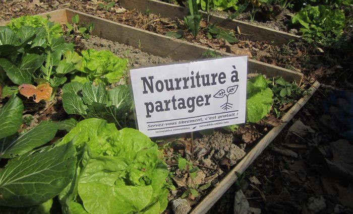 """incroyables comestibles potagers urbains legumes gratuits 7 1 - Les """"Incroyables comestibles"""", des potagers urbains en libre service"""