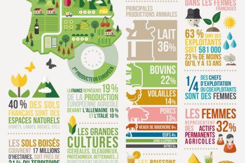 fermefrance2017 2 480x320 - Chiffres clés de l'agriculture et de l'élevage en France