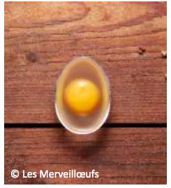 Capture d'écran 2020 02 21 à 14.25.48 - Le substitut d'œuf végétal Les Merveillœufs lance sa campagne de crowdfunding