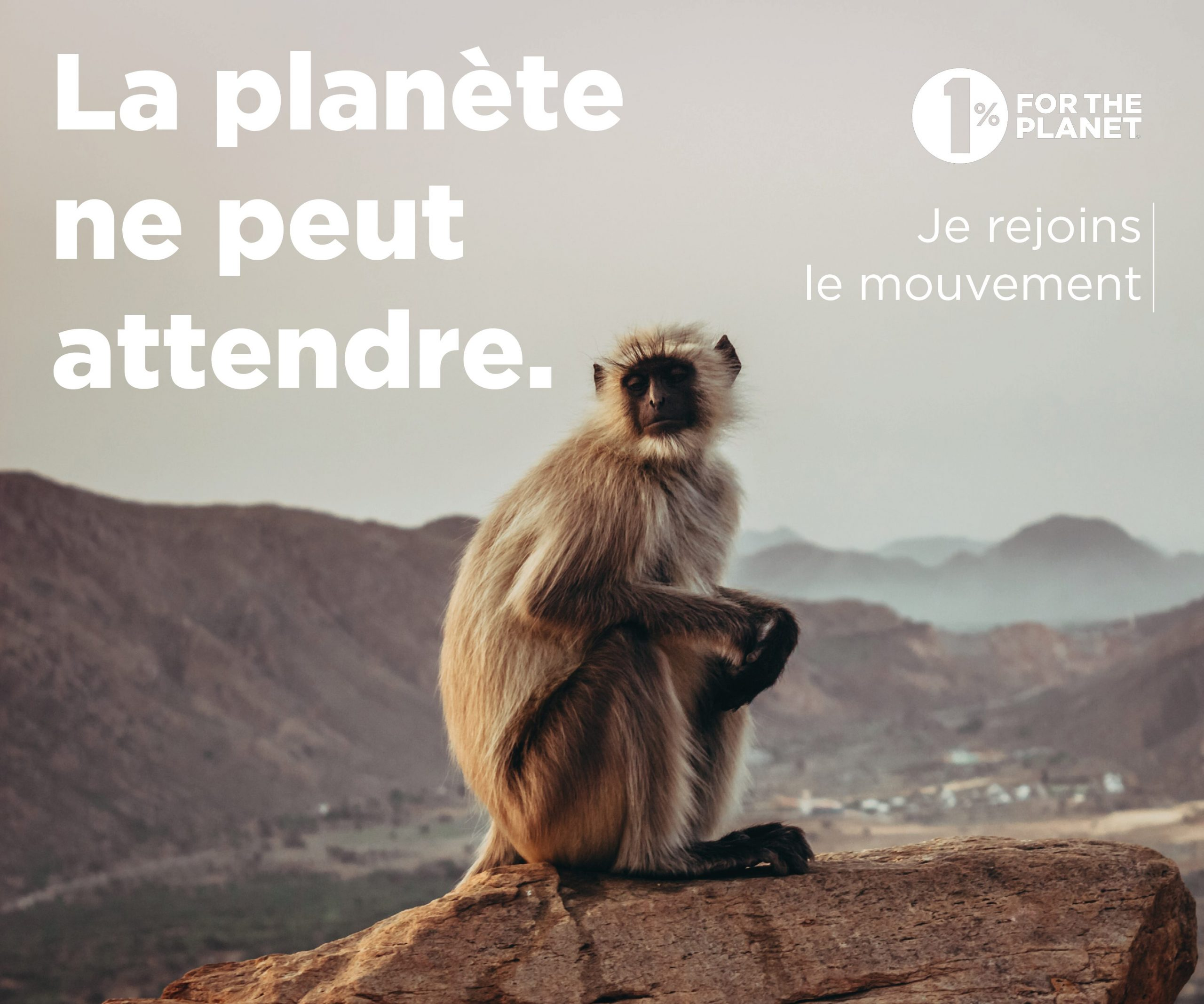 300x250 2 scaled - Pour nourrir demain rejoint 1% for the Planet