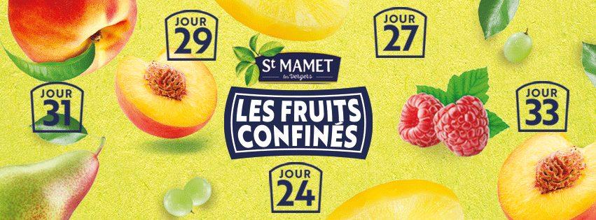 """92708343 1090268874671809 6804504369086595072 n - St Mamet accompagne les français avec """"Le journal des fruits confinés"""""""