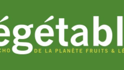 Capture d'écran 2020 05 30 à 17.57.40 480x270 - Présentation de la Communauté Pour nourrir demain dans le magazine végétale