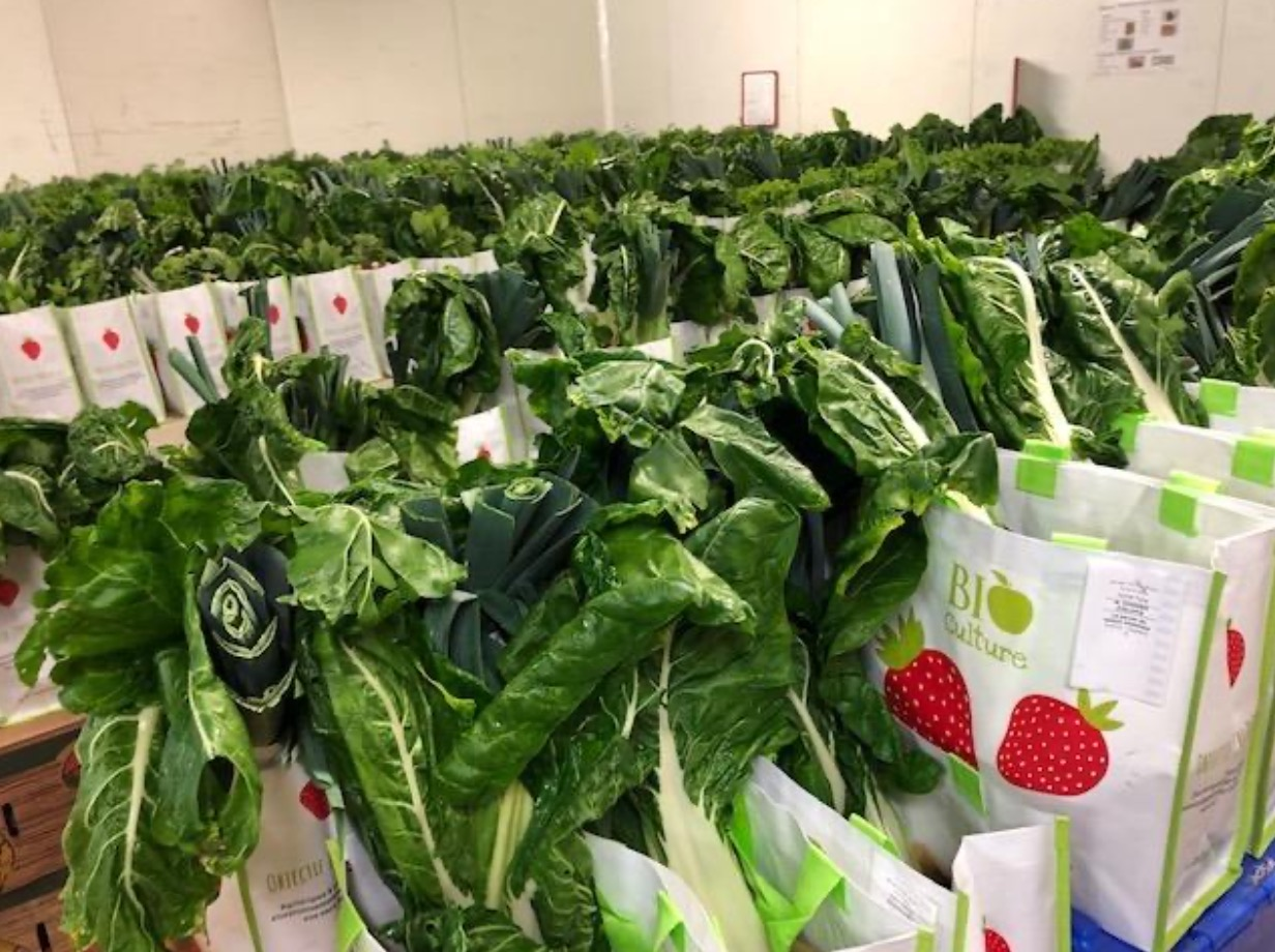 Capture d'ecran 2020 07 28 a 07.29.34 - Bio Culture : quand la livraison de légumes bios sauve des emplois
