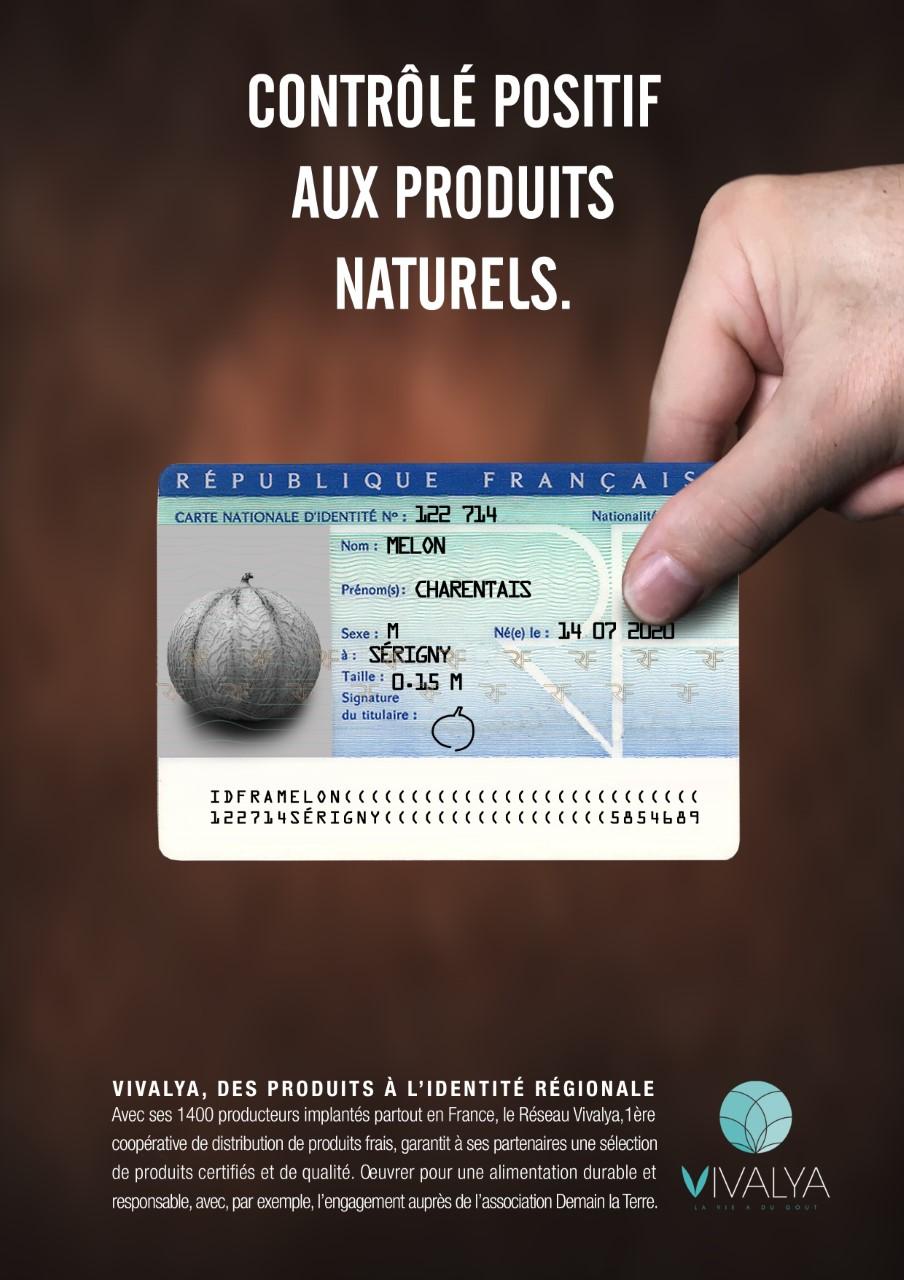 VVA print melon - Une carte d'identité des fruits et légumes vertueux
