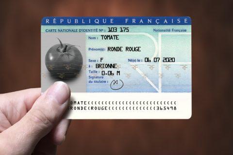 VVA print tomate 480x320 - Une carte d'identité des fruits et légumes vertueux
