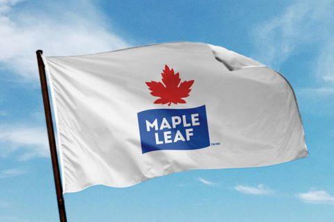 xMapleLeafFoodsFlag Lead.jpg.pagespeed.ic . 5wrgTBxMl 480x320 - Maple Leaf est la première grande entreprise alimentaire à devenir carboneutre