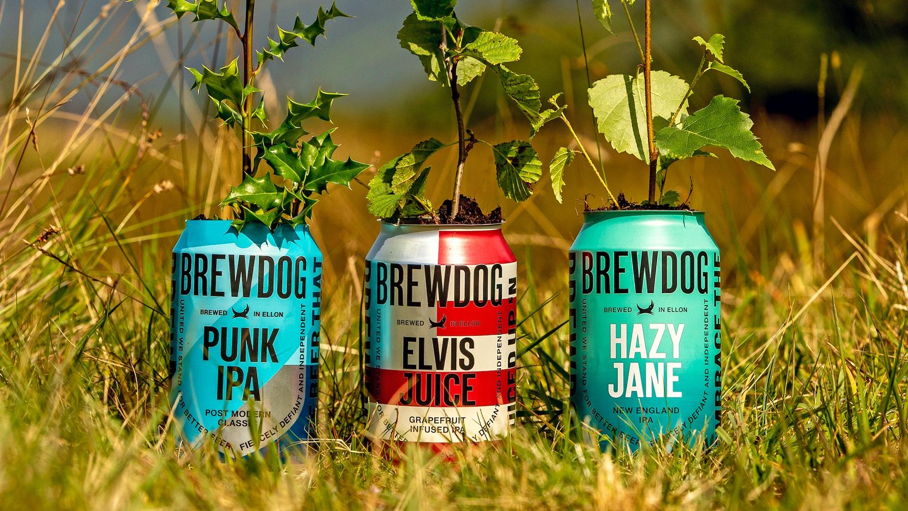 Drink Punk Kill Carbon - Brewdog : premier brasseur au monde neutre en carbone
