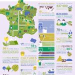 image 588f58a3 da70 465b a5fe 7553ebc859ca20200805 222934 150x150 - Infographie : la Ferme France