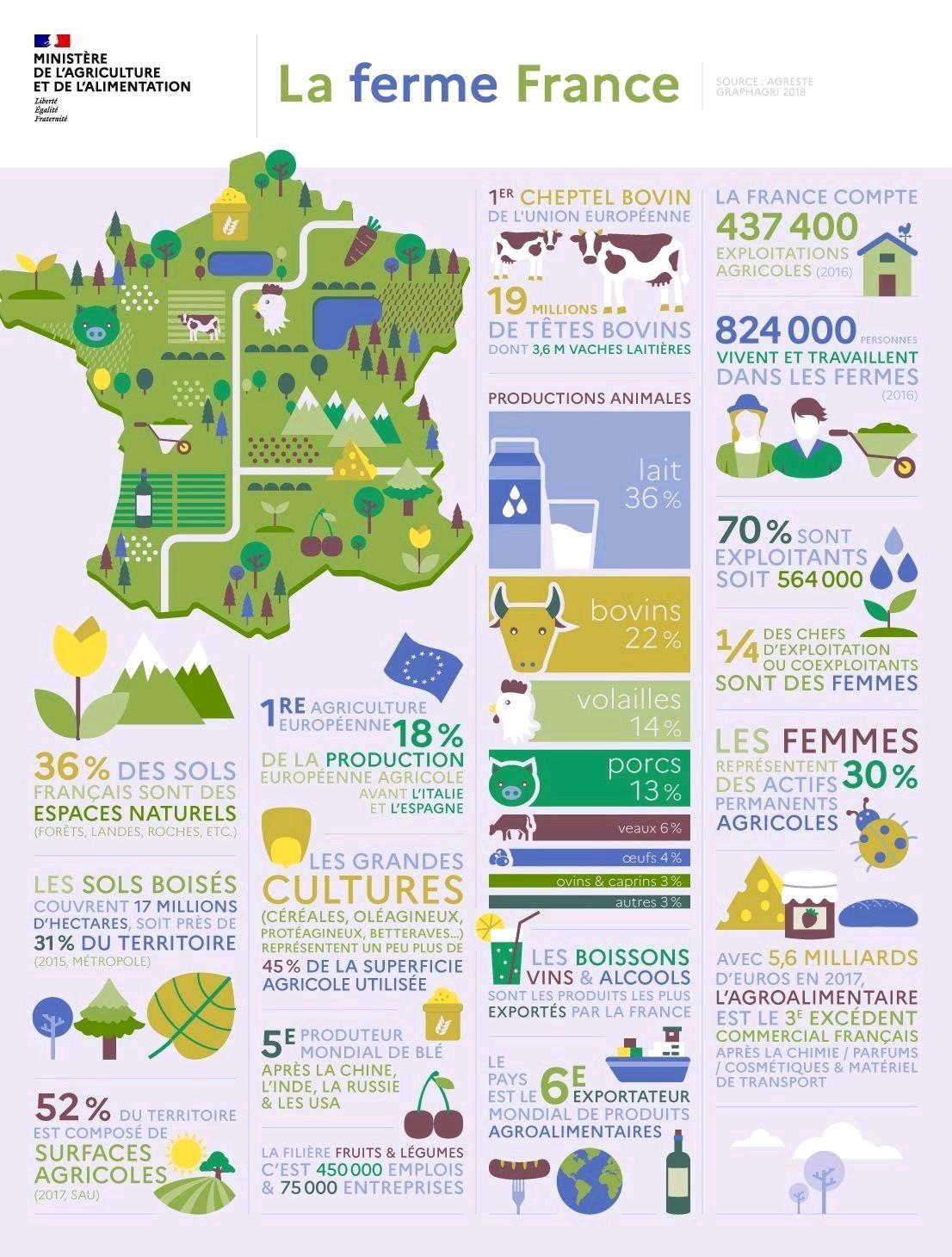 image 588f58a3 da70 465b a5fe 7553ebc859ca20200805 222934 - Infographie : la Ferme France