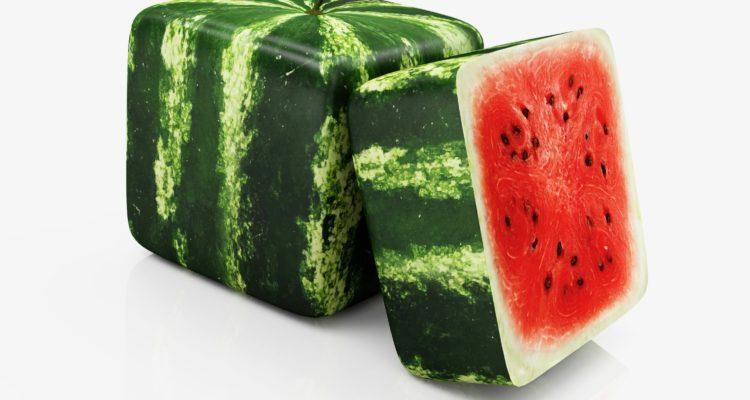 pasteque carree rasslava 750x400 1 - Des pastèques cubiques