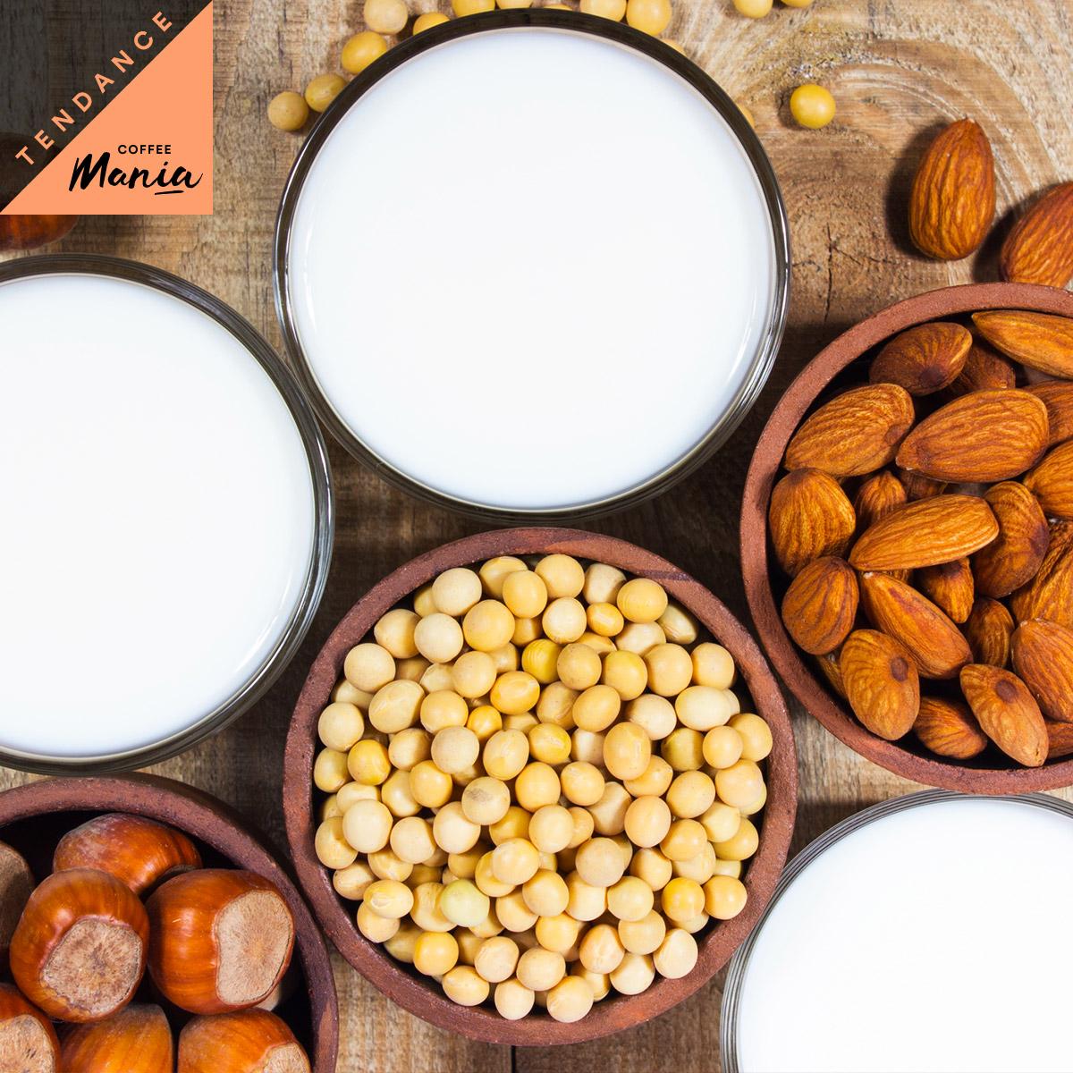 40d98b2a98d4803fe493e24ee47cfd26088b5bf4 - Quels sont les différents laits végétaux ?