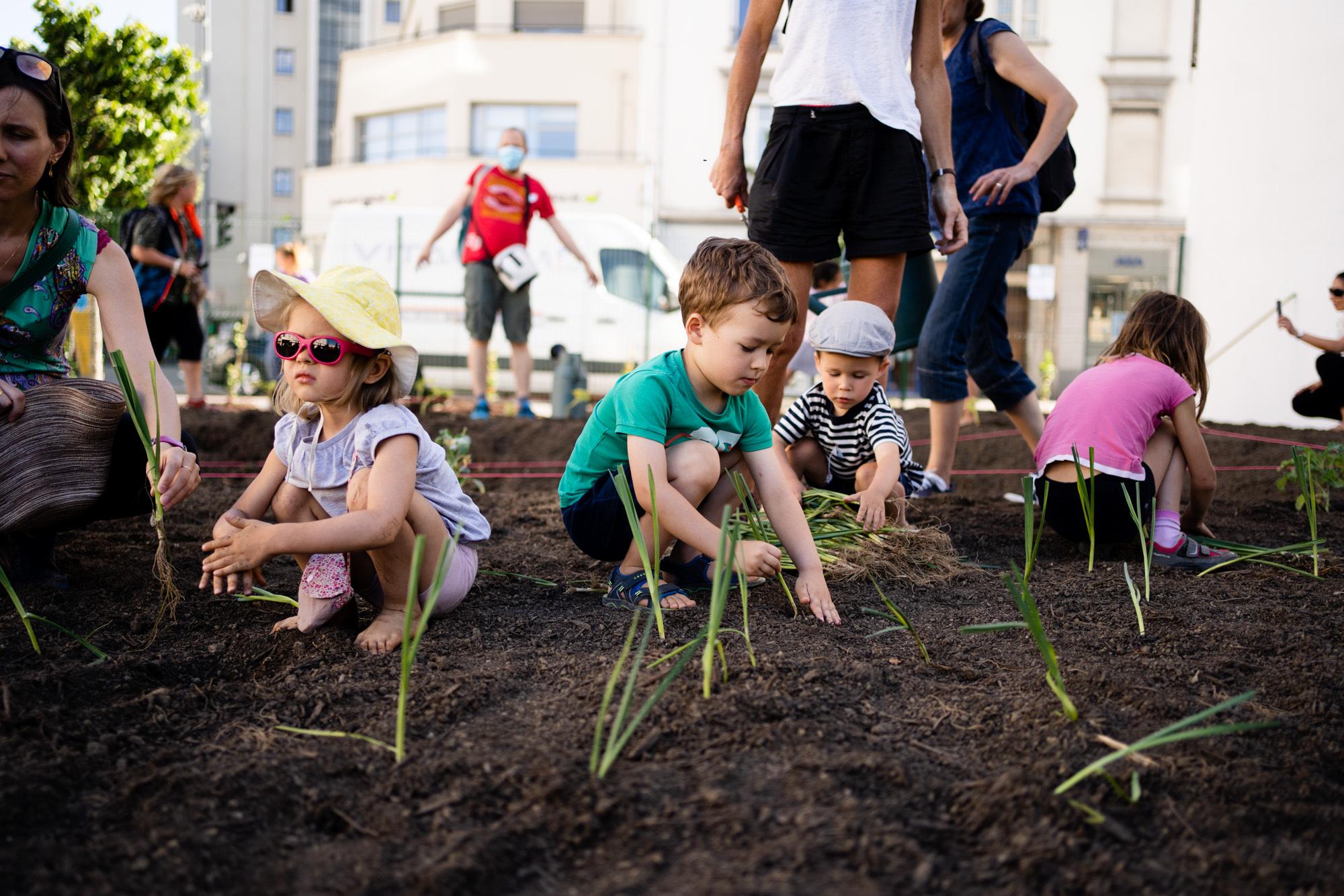 gratte ciel 43 - La Ferme des artisans, un projet éco-responsable pour mieux vivre la ville de demain