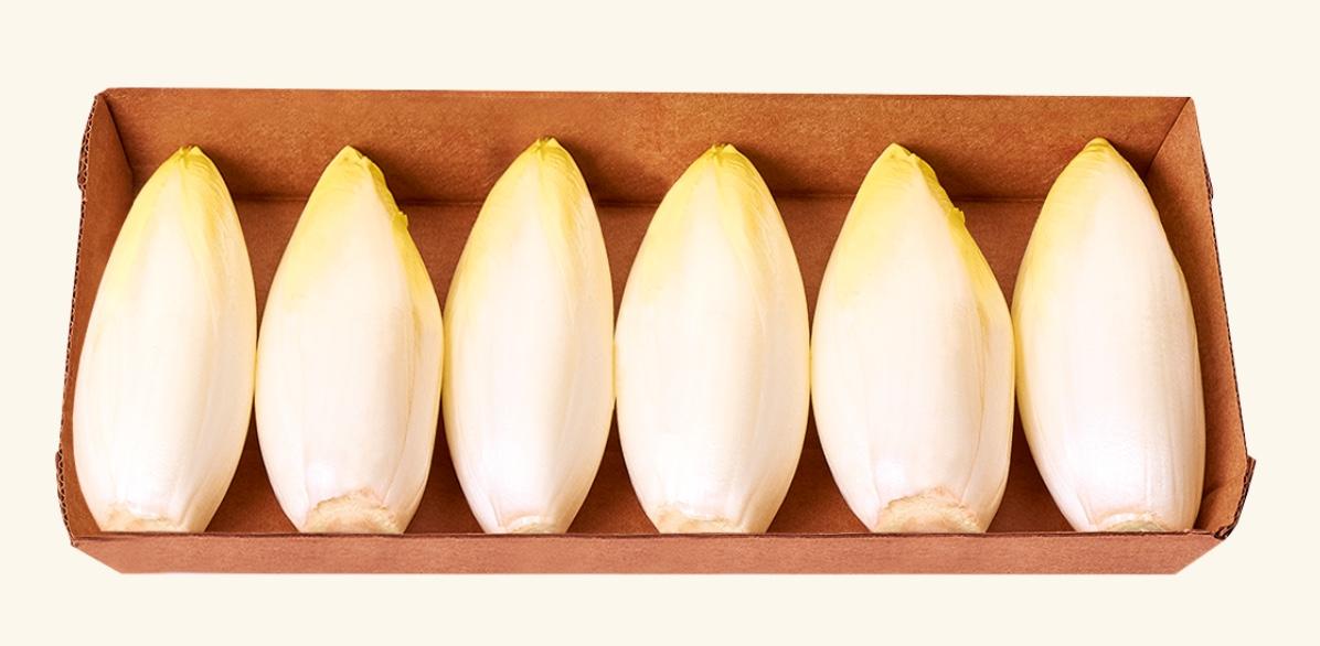Capture decran 2021 02 04 a 09.04.55 - Nouvel emballage éco-conçu pour les jeunes pousses d'endives produites par la coopérative Perle du Nord