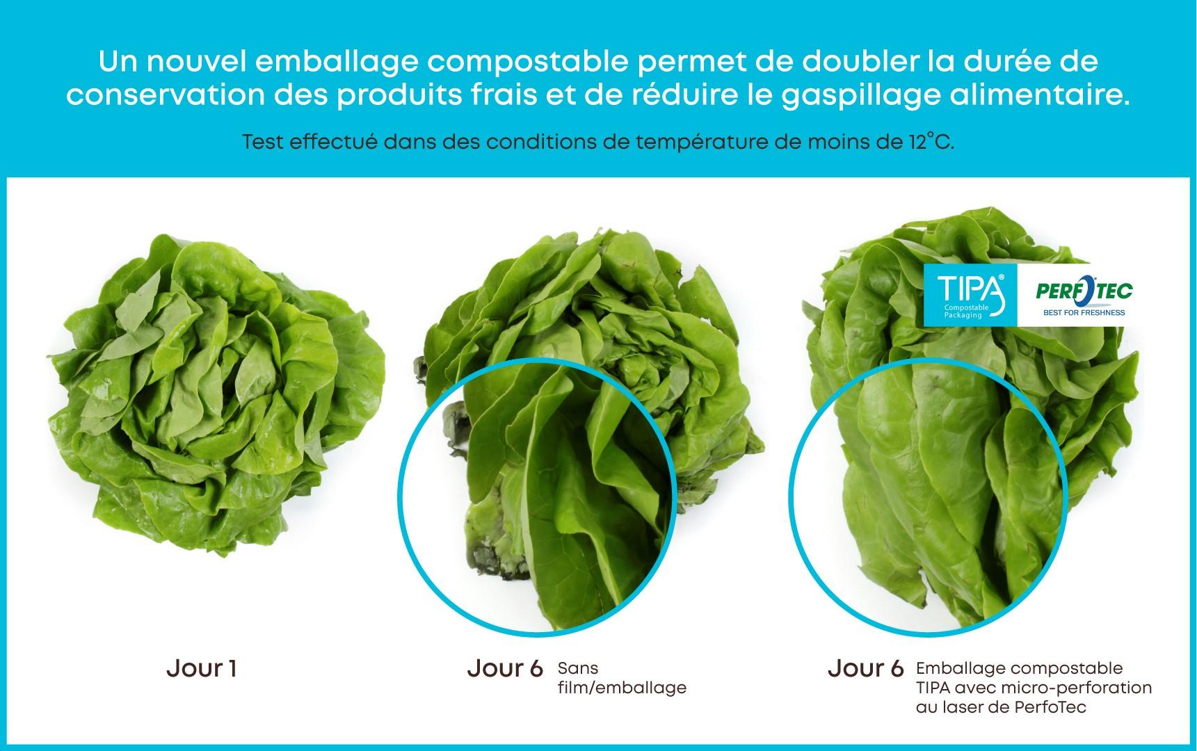 TIPA Perfotec Lettuce Test FR - Un nouvel emballage compostable peut doubler la durée de conservation des produits frais