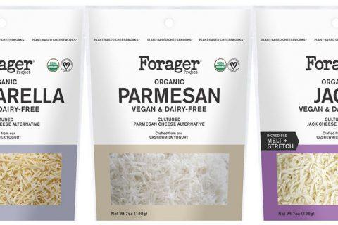 forager 480x320 - Une gamme de fromages bio végétaliens