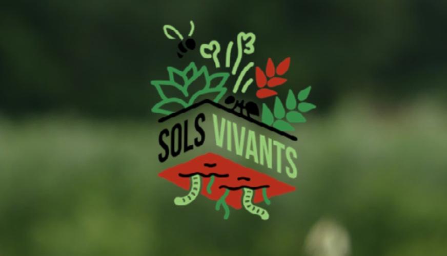 Capture decran 2021 04 15 a 17.23.29 - Dans les Hauts de France, l'agriculture régénératrice se déploie de manière collective