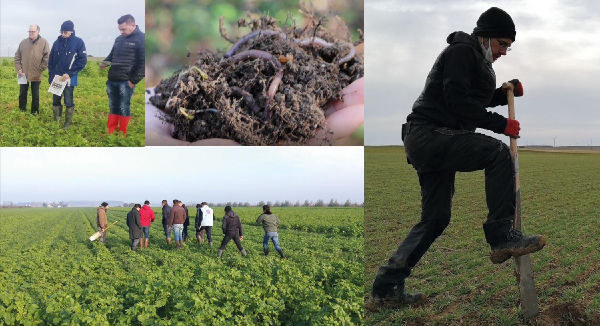 Capture decran 2021 04 15 a 17.23.42 - Dans les Hauts de France, l'agriculture régénératrice se déploie de manière collective