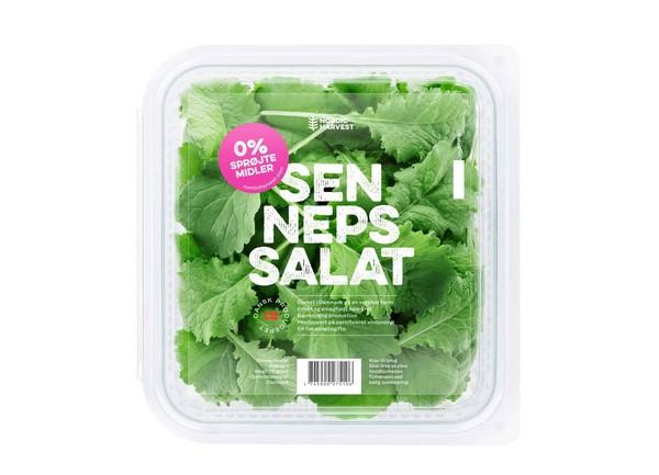 nordich - Des salades et herbes fraiches issues de fermes verticales au Danemark