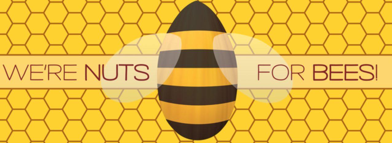 Capture decran 2021 05 03 a 12.14.13 - Des beurres de noix novateurs, éthiques et savoureux