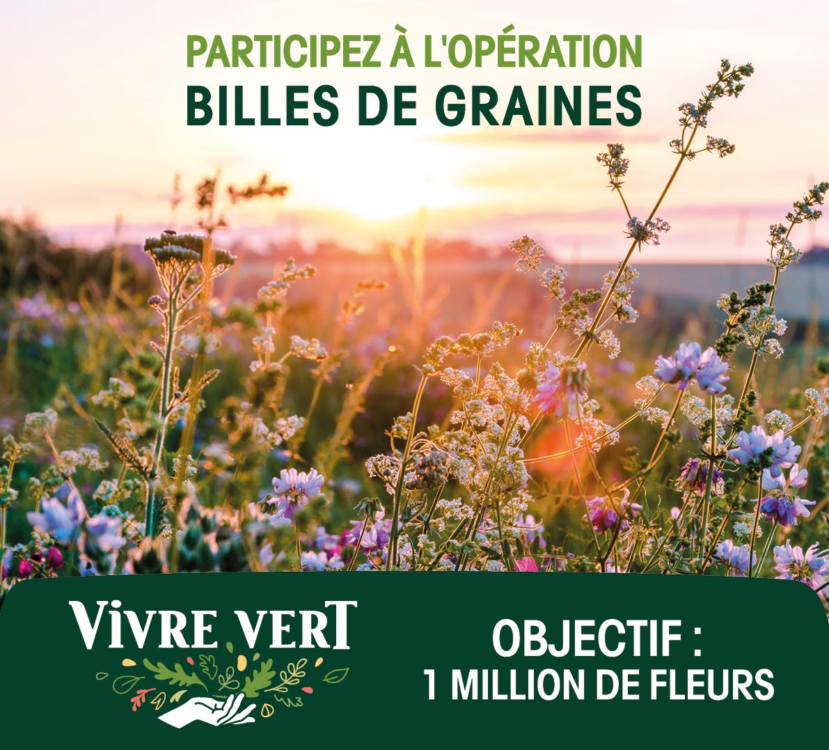 VV BDG affiche - Participez à l'opération Billes de Graines de Vivre Vert