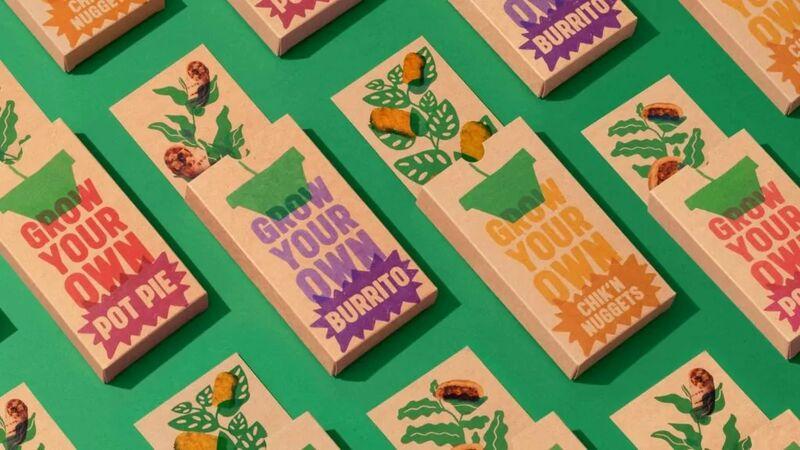 alpha foods - Les kits de semences d'Alpha Foods permettent de créer des ingrédients sains à la maison.