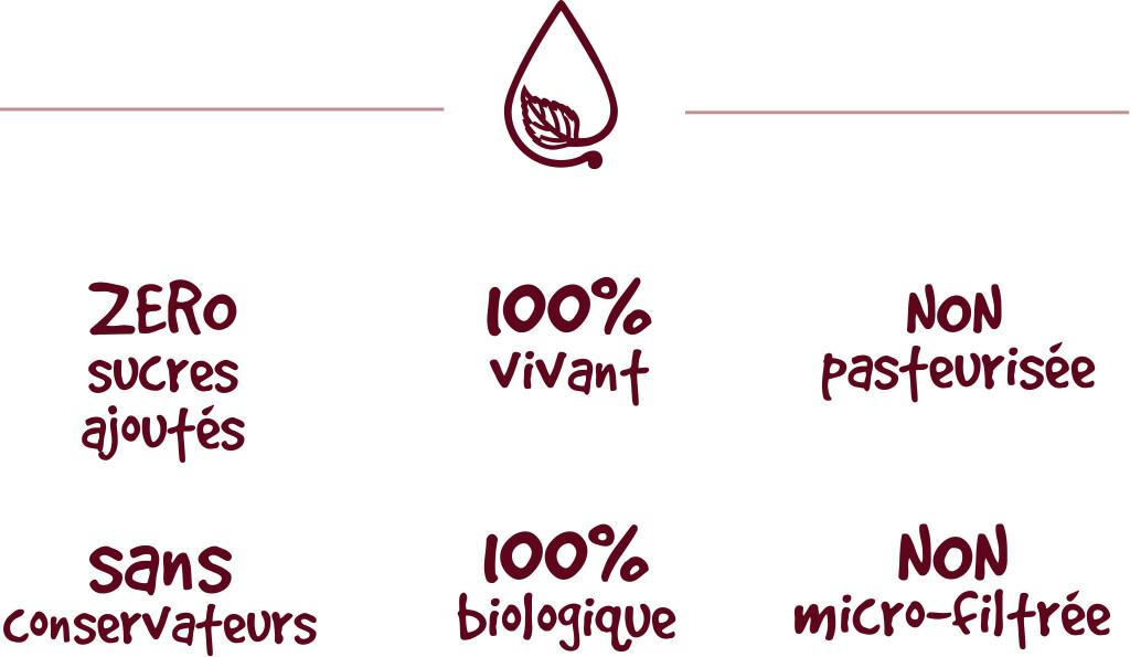 seve ice  - Sève Ice : l'infusion à base de sève de bouleau fermentée