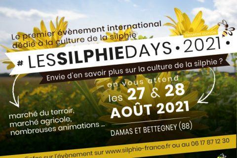 """11 silphie days ban mail 480x320 - La Silphie, une """"plante écolo"""" qui révolutionne l'agriculture"""