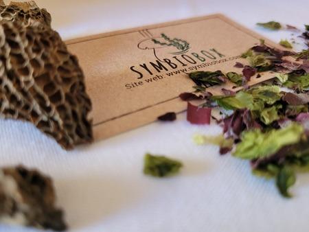 20210705 133722 1 - Des box pour déguster des champignons et des algues
