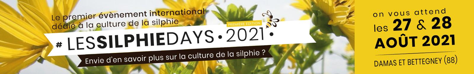 """ban 1600 site - La Silphie, une """"plante écolo"""" qui révolutionne l'agriculture"""