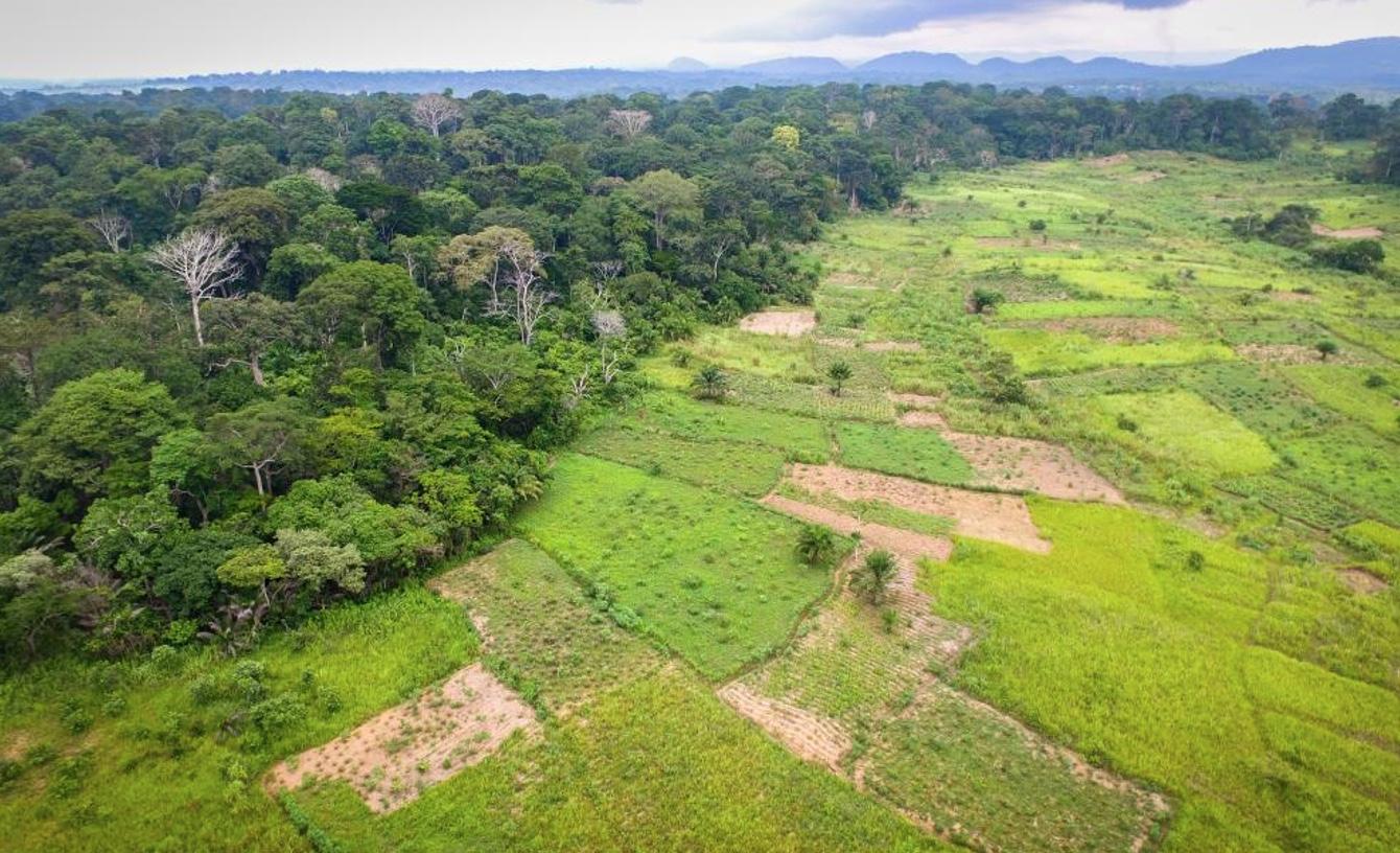Capture decran 2021 09 06 a 15.45.39 - Comment l'agriculture doit changer ? selon ActionAid