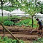 La micro ferme modele agricole pour le 21eme siecle   150x150 - Consommer mieux : les nouvelles habitudes des Français