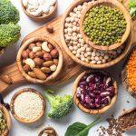 proteine vegetale 150x150 - Roquette ouvre son centre d'expertise de protéines végétales